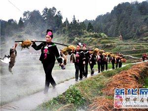 贵州雷山27项大型民俗活动喜迎新春
