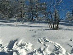 抓住冬天的尾巴,趁着雪没化诚邀白城户外达人们一起露露营