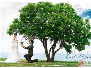 拍婚纱照时摆哪些姿势提升气质