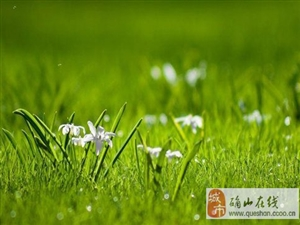 春季养心护肝注意四点