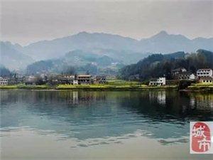 2016中国最美油菜花海汉中旅游文化节:红寺湖垂钓大赛公告