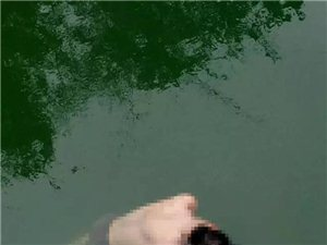 揭西某水�彀l�F一具男性尸�w,警方已介入�{查。