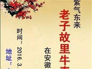 紫气东来・老子故里涡阳县牛春晓先生画展现场组图