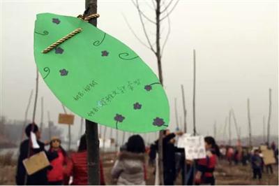平遥梁村亲子植树活动,小朋友许下的绿色梦想一夜间传遍了平遥城!