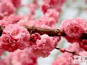 【风雨户外】3月20日