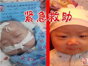 紧急求助:救救澳门美高梅官网这个才四个月大孩子吧.....