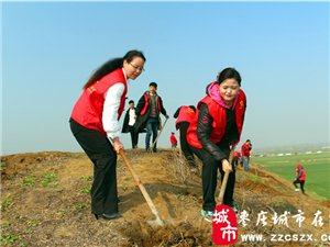 台儿庄区义工协会举行青年植树活动