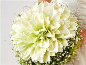 美妙搭配手捧花为新娘整体造型加分