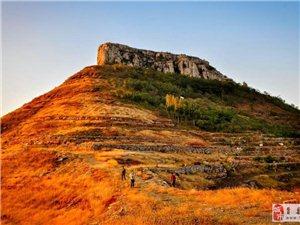 新庄镇柱子山风景区――集旅游、观光、自助采摘于一体的生态观光区