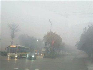 雾气环绕――迷茫的大千世界,广州沙河