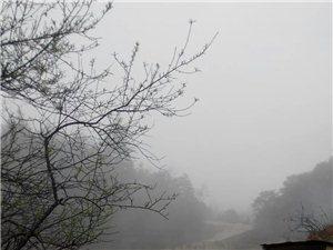 冒雨而上,云盖岽――令人向往的神圣天堂