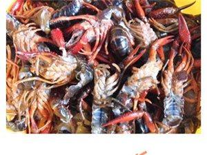 自制美味小龙虾,吃到根本停不下来~
