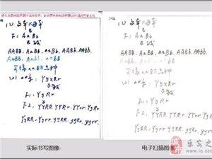 高考��X�卷流程