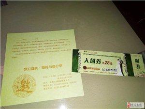 招远婚庆联盟联合龙湖大酒店共同举办大型婚礼秀活动