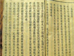 泸州家族清明会 宣讲儒家文化与家风