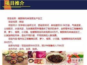 双丰推介【招商引资】项目