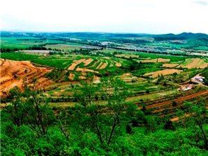 走啦,到杏府山庄赏辽梅花、杏花、包地、种菜、植树、当农民去啦!