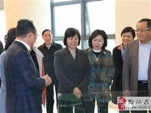 全国人大常委会副委员长、全国妇联主席沈跃跃到渝东南电商产业微企孵化园调