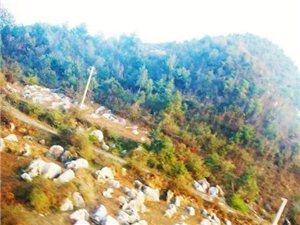 贵州特产 石头