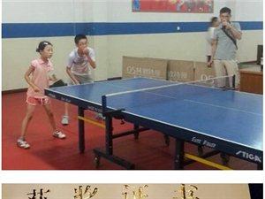 逸小学子全国少儿乒乓球比赛传佳绩