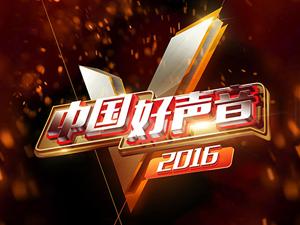 2016《中国好声音》第五季兴文赛区报名开始