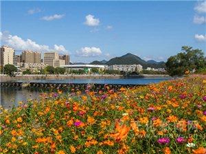 澳门大发游戏网站县城这么美你知道吗?
