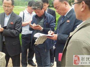 朝鲜农业代表团赴我县开展交流访问