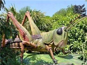 """首届""""稻草人""""《蝴蝶谷》热带雨林变异巨型昆虫入侵!门票送送送!"""