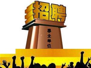 2016年宿州市�`璧�h事�I�挝还��_招聘人�T公告
