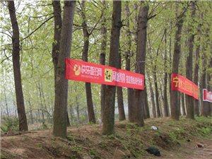 春暖花开季――滁州听渔轩渔具工作站约钓比赛向着幸福出发!