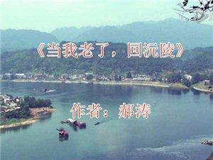 【感动】当我老了,回沅陵江边柳林