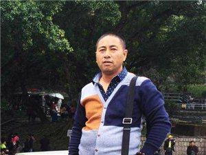 甘肃省美协会员王彦龙山水画作品欣赏