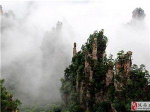 张家界森林公园~黄龙洞~大峡谷~天门山最火爆四日游路线