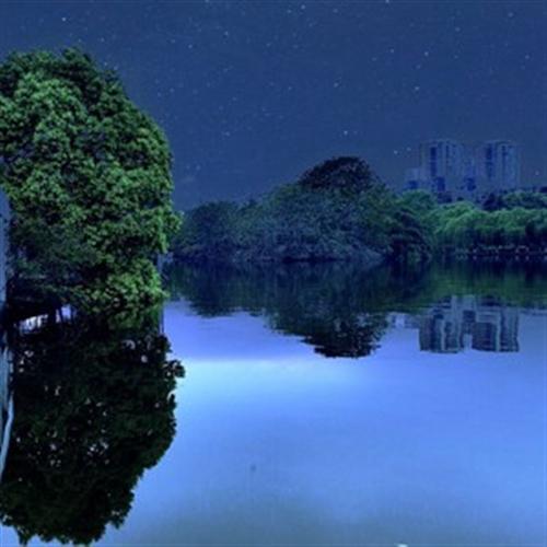 金雁湖写意之梦里水乡