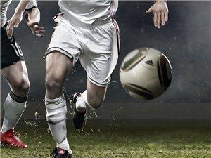 商丘地区足球邀请赛(虞城)专题