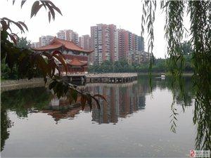 《环保杯》征文:五柳公园————-澳门太阳城娱乐城中的璀璨明珠