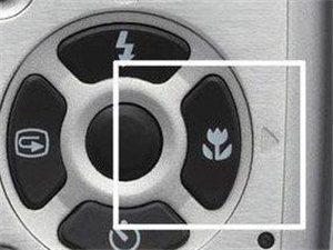 微距摄影――浅谈DC相机微距模式