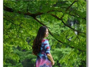 【春天里的倩影】