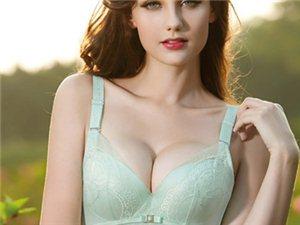 彩婷2015新品春女性感深V蕾丝内衣文胸聚拢厚小胸收副乳调整