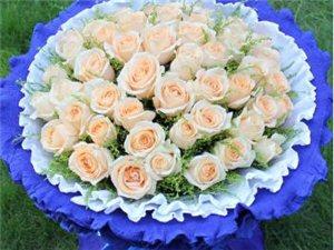 66枝香槟玫瑰(非节假日出售,详情请到店咨询)