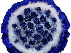 19枝蓝玫瑰(非节假日出售,详情请到店咨询)