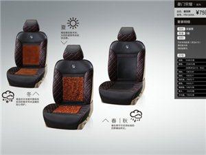 皮尔卡丹专车定制3D设计防脏汽车坐垫