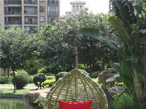 嘉园-防竹吊篮(2)