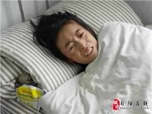 歌手海心等爱心人士到县中医院看望周启茜