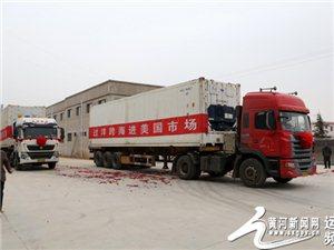 平陆县向美国出口百吨苹果