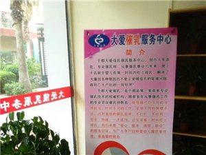 金沙平台大爱催乳服务中心
