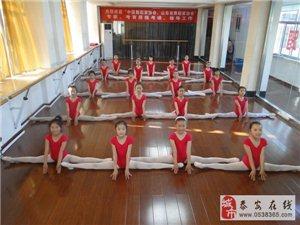 圣韵舞蹈学校暑期班招生大优惠!