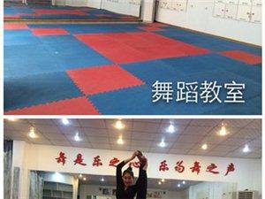 吳堡縣紅&#8226舞鞋舞蹈培訓中心2015年暑期招生開始!