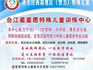 合江星星愿特殊兒童訓練中心招生