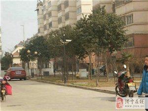 免税+齐鑫花园1楼3室2厅,139平85万天地房